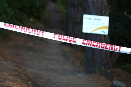 The woman's body was found in the Wellington Town Belt and police have cordoned off the area (photo: Jared Mason)